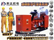 120KW沼气发电机组、低碳节能、120KW沼气发电机组、节能环保