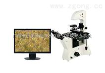 锦阳数码倒置生物显微镜、锦阳倒置显微镜、锦阳生物显微镜ME41