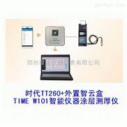 TT260-TIMEW101智能仪器涂层测厚仪
