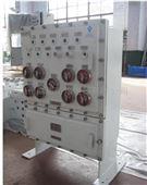 防爆照明配电箱BXD(D)
