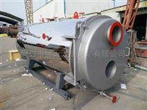 0.3吨烧燃气热水锅炉