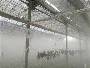 大棚养殖喷雾加湿