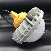 NTK5080防爆灯 NTK5080-L60LED平台灯