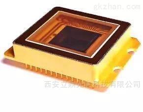 供应短波焦平面探测器