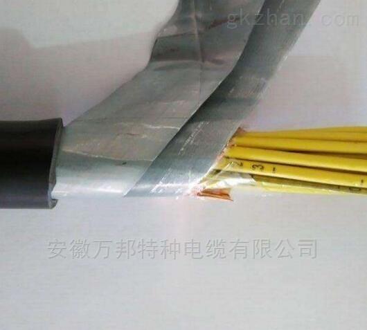 ZN-KYJV22铠装控制电缆