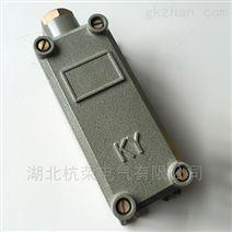 强磁型防爆磁性限位开关SCK-2供应商