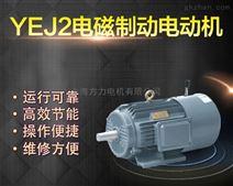 YEJ电磁制动电机