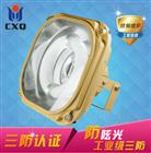 XQW6102免维护节能防水防尘防腐灯