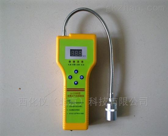 天然气检测仪 型号:WN95-CA-2100H