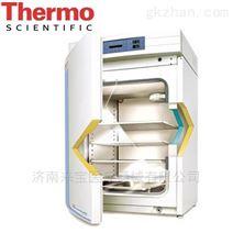 美国Thermo二氧化碳培养箱 3111