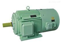 Y2VP变频调速三相异步电动机