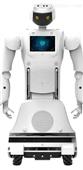 三宝金刚系列机器人