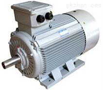 200KW 6KV高压电动机