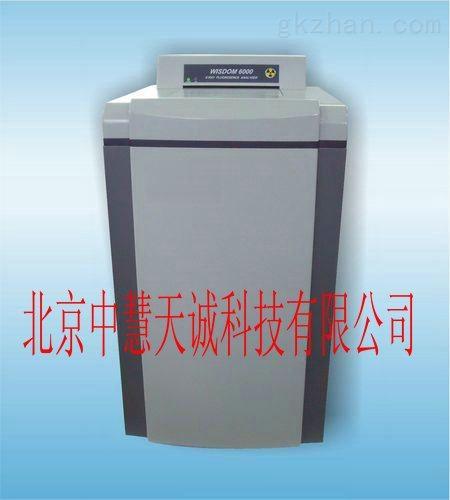 SPY/WISDOM-6000型 X荧光分析仪