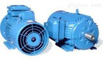 QABP系列变频调速电机