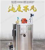 旭恩300公斤燃气蒸汽发生器价格优惠