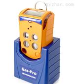 Gas-Pro 五合一气体检测仪