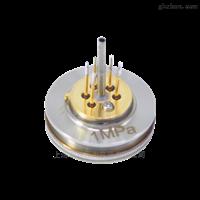 PT124G-3101扩散硅充油芯体厂家