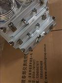 一体化振动变送器YD9200B-30B-02