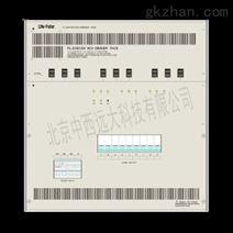 12回路灯光控制器