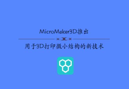 MicroMaker3D推出用于3D打印微小结构的新技术