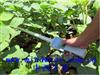 M401497中西植物冠层测量仪 型号:M401497